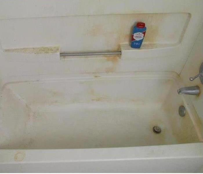 Rocky Point Bathroom Mold
