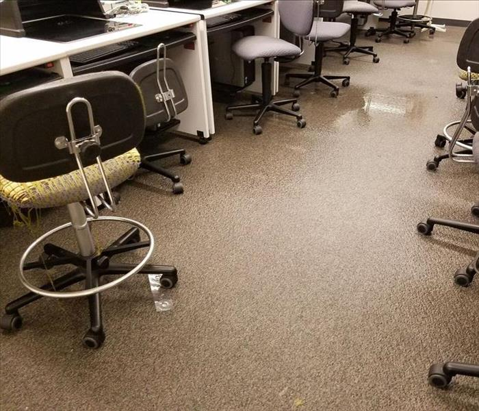 Water Problem in a Call Center--Tampa