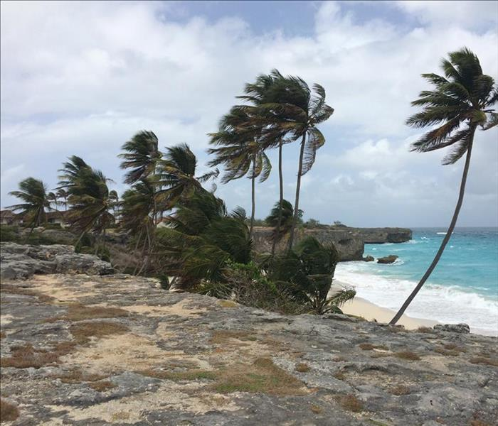 Storm Damage How to Get Prepared For Hurricanes
