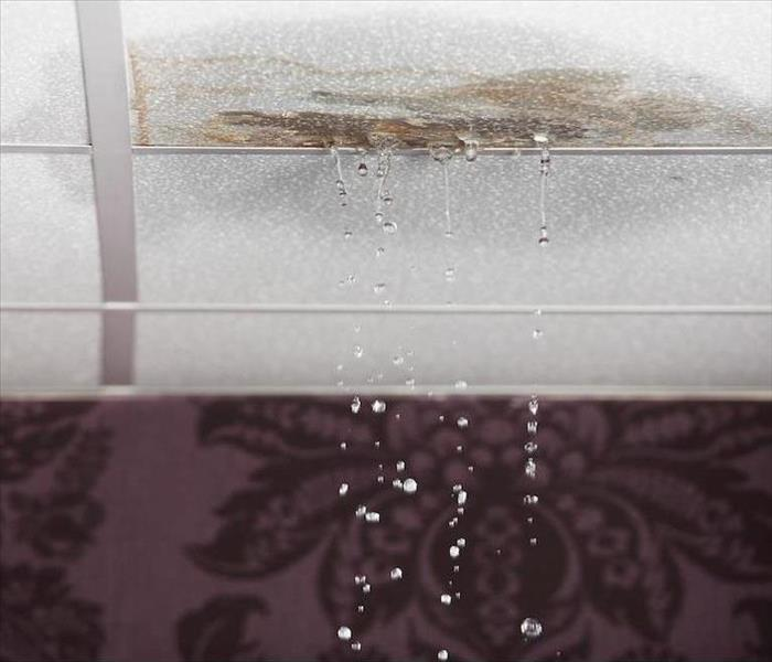 Water Damage Common Hazards to Avoid During Water Damage Restoration in Tampa