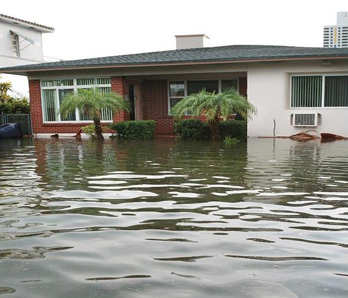 Storm Damage Cleaning Your Home After Flood Damage In Tampa From A Hurricane